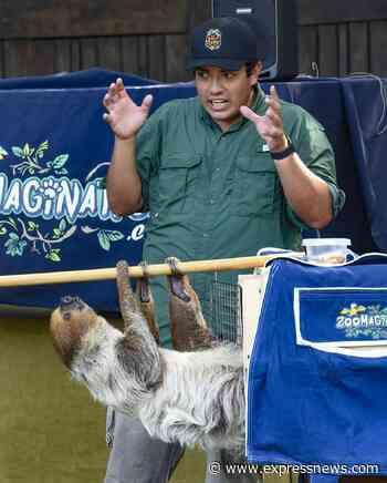 'The Wild Side': San Antonio man's YouTube channel focuses on exotic animals - San Antonio Express-News