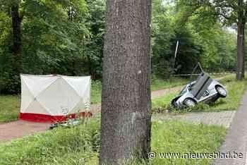 67-jarige bestuurder rijdt in gracht en overlijdt ter plaatse - Het Nieuwsblad