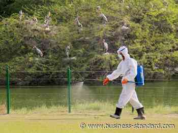 CCMB lab releases guidelines for coronavirus testing on zoo animals - Business Standard