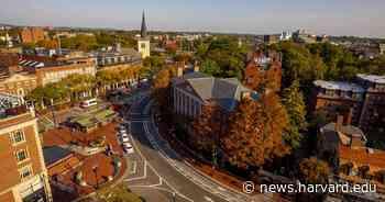 Cambridge RISE project aims to help community - Harvard Gazette