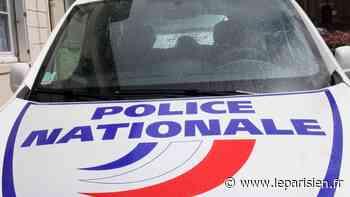 Dammarie-les-Lys : arrestation des trois mineurs qui ont tabassé gratuitement un handicapé mental en octobre - Le Parisien
