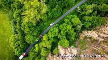 Warstein-Allagen: Brand im Wald - Person flüchtet, als die Feuerwehr kommt - Drohnenbilder zeigen Gefahr vo... - soester-anzeiger.de