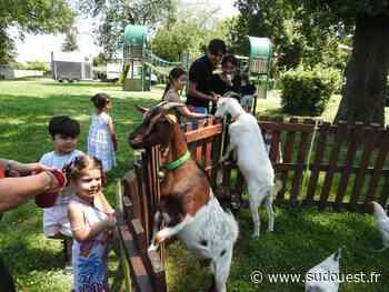 Floirac : des animaux choyés par les enfants - Sud Ouest