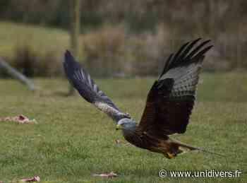 Sciences Participatives : A l' Ecoute des Oiseaux Floirac - Unidivers.fr - Unidivers