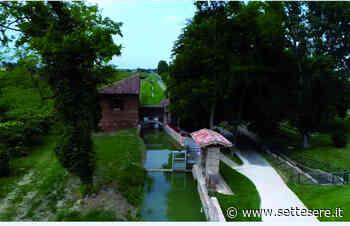 Castel Bolognese, aperte le prenotazioni per la visita al molino Scodellino e laboratorio di cucina il 25 giugno - Settesere