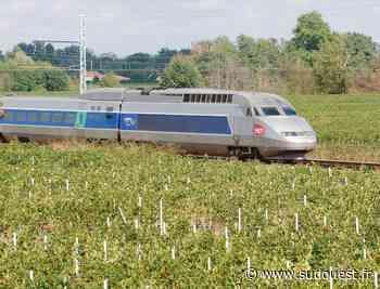 Bordeaux : une femme meurt dans un TGV - Sud Ouest