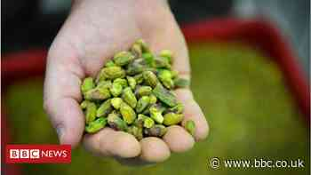 California man arrested over theft of 42,000lbs of pistachios