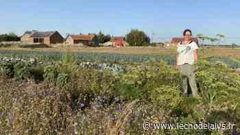 Sortie : Des visites à la ferme programmées au Doulieu et à Laventie - L'Écho de la Lys
