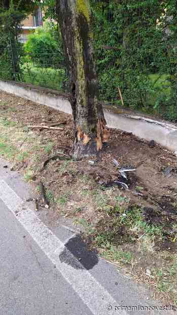 Si schianta contro un albero: grave un 43enne - Prima Milano Ovest