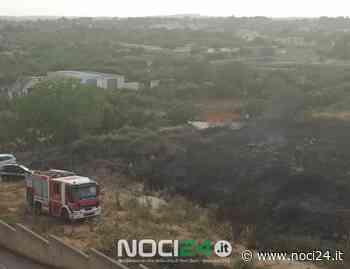 Incendio alla periferia di Noci - NOCI24.it