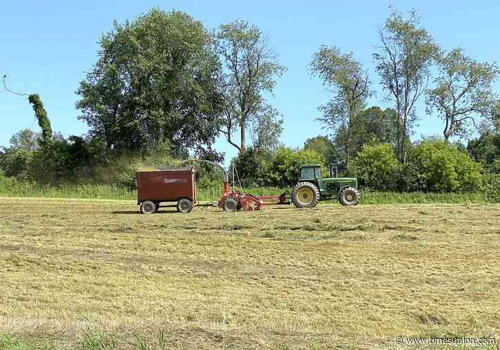 Local farmers' season off to a good start