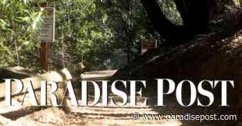 Paradise Arts Center to launch lending art library - Paradise Post