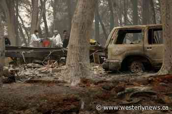 'Forever War' with fire has California battling forests instead - Tofino-Ucluelet Westerly News
