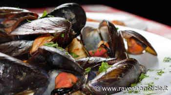 Slow Food porta la Cozza Selvaggia di Marina di Ravenna anche a Slow Fish. Nel weekend la festa a Marina - ravennanotizie.it