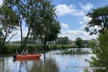 Pleziervaart op Leie tussen Gent en Deinze tijdelijk onderbroken door omgevallen boom - Het Nieuwsblad
