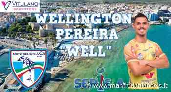 Vitulano Drugstore C5 Manfredonia: annuncio Well - Manfredonia News