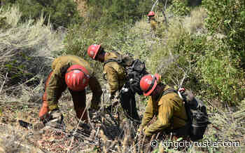 Willow Fire holds steady at nearly 2,400 acres - King City Rustler