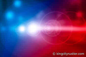 Salinas Valley Police Reports | Published June 16, 2021 - King City Rustler