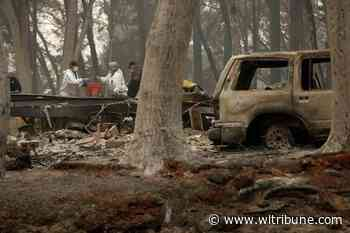 'Forever War' with fire has California battling forests instead - Williams Lake Tribune