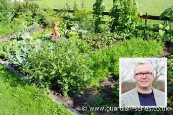 Solution sought to gas company's Redbridge allotment plans | East London and West Essex Guardian Series - East London and West Essex Guardian Series