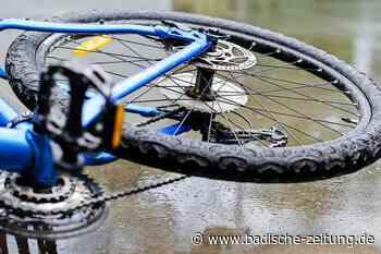 Hund rennt bei Maulburg in ein Fahrrad und bringt 70-Jährige zu Fall - Maulburg - Badische Zeitung - Badische Zeitung