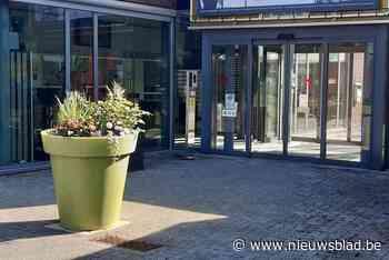 Groendienst plaatst reuzenbloempotten voor de biodiversiteit - Het Nieuwsblad