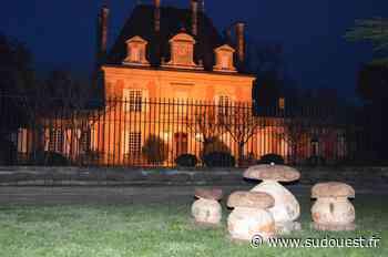 Blanquefort : L'été des châteaux à Saint-Ahon ce dimanche 20 juin - Sud Ouest
