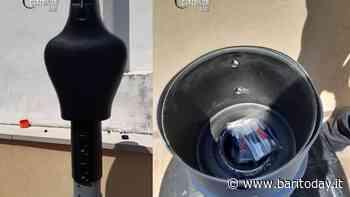 Nasconde la droga in un manichino da boxe sul terrazzo, incastrato dal fiuto di Zilo: 33enne nei guai - BariToday