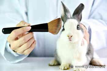 Cosmetici testati su animali: il Maine è il sesto Stato americano a vietarne la vendita - greenMe.it