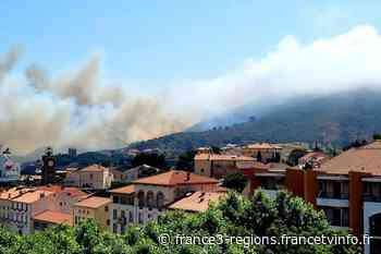 Port-Vendres : une cinquantaine d'hectares brûlés au Cap Béar - France 3 Régions