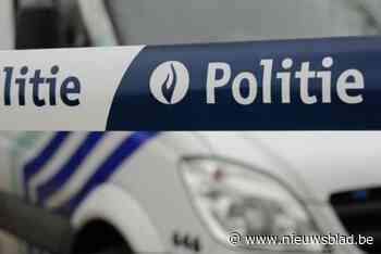 Bestuurder met rijverbod vlucht te voet weg na crash in weide - Het Nieuwsblad