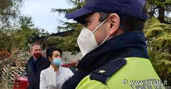 Monfalcone: escrementi di animali e insetti morti al ristorante cinese - Il Friuli