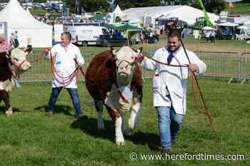 Covid: Kington Show cancels for second year in a row