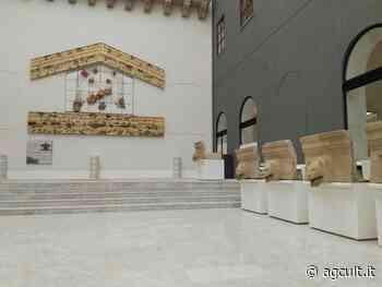 Palermo, il 24/6 vaccinazioni tra i reperti al Museo archeologico Salinas - AgCult
