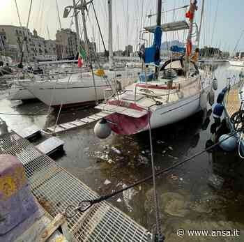 Inquinata acqua della Cala a Palermo,liquami e cattivo odore - Agenzia ANSA