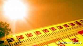 Caldo, mercoledì allerta rossa a Palermo: rischio incendi e massime di 36 gradi - Giornale di Sicilia