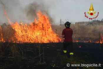 Temperature oltre 40 gradi, decine di incendi a Palermo e provincia - BlogSicilia.it