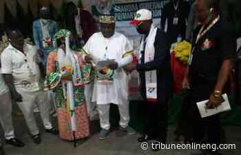How Ifeanyi Ubah emerged YPP candidate for Anambra guber election - NIGERIAN TRIBUNE