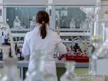 Covid, ecco quanto durano davvero gli anticorpi
