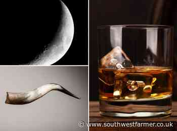 Waterford Distillery makes Ireland's first biodynamic whisky - South West Farmer