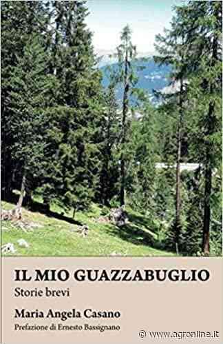 Maria Angela Casano: Il mio guazzabuglio - AGR online