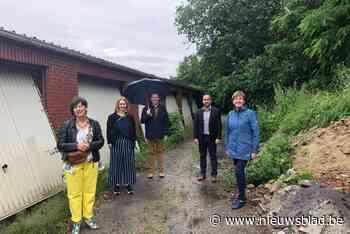 """Neteland zet in op natuur en water in dorpskernen: """"Tegelwippen is belangrijk"""""""