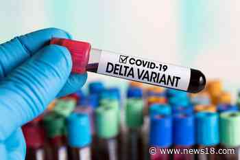 Coronavirus News LIVE Updates: 22 Delta Plus Cases in India, Variant Found in 9 Other Countries, Says Govt - News18