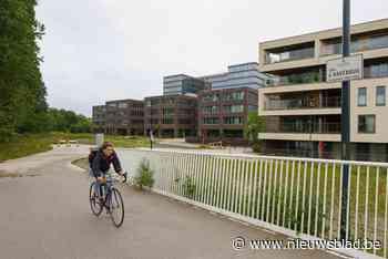Hinder door 'hoop stenen' bij gloednieuwe fietsbrug eind dit jaar opgelost - Het Nieuwsblad