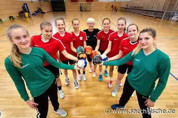 Görlitz ist Sachsens Handball-Nachwuchshochburg - Sächsische.de