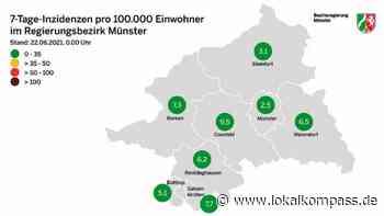 Coronavirus: Aktueller Stand für den Regierungsbezirk am Dienstag , Kreis Recklinghausen 170 - Lokalkompass.de