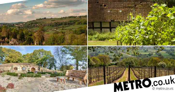 UK vineyards you can book on Airbnb for a wine-themed staycation