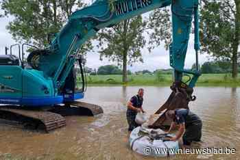 Oude watermolen kan nipt gevrijwaard worden van overstroming veroorzaakt door bevers