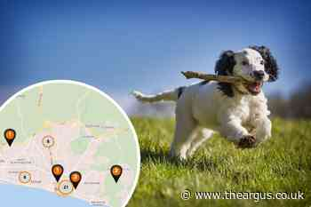 Interactive map reveals lungworm hotspots across Sussex