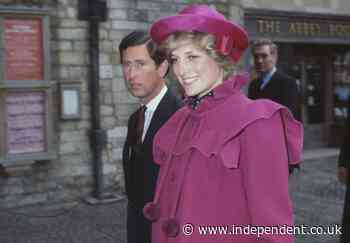 Princess Diana asked 'oh my God, what's happened' in final moments, fire chief claims